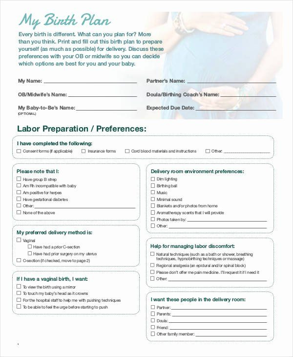 One Page Birth Plan Template Printable Birthing Plan Template Unique Birth Plan Template