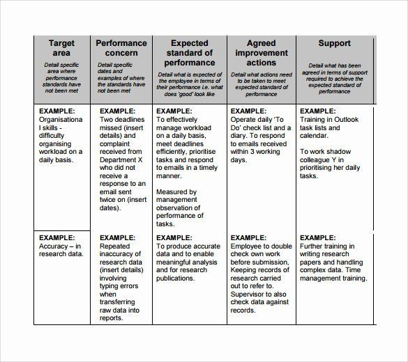 Performance Improvement Action Plan Template Performance Improvement Action Plan Template Best Sample