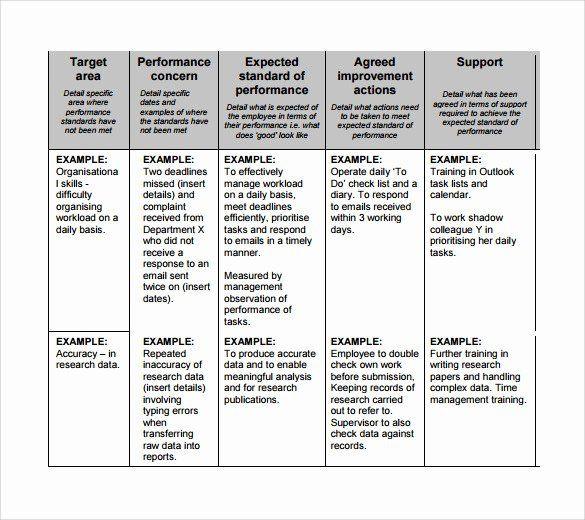Performance Improvement Action Plan Template Performance Improvement Action Plan Template Best Sample