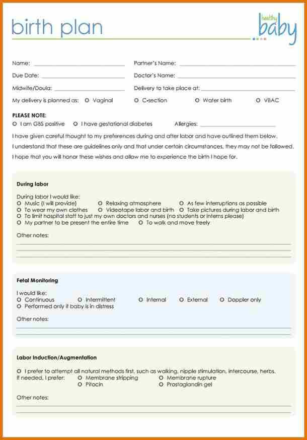 Printable Birthing Plan Template Birth Plan Template 20 Download Free Documents In Pdf
