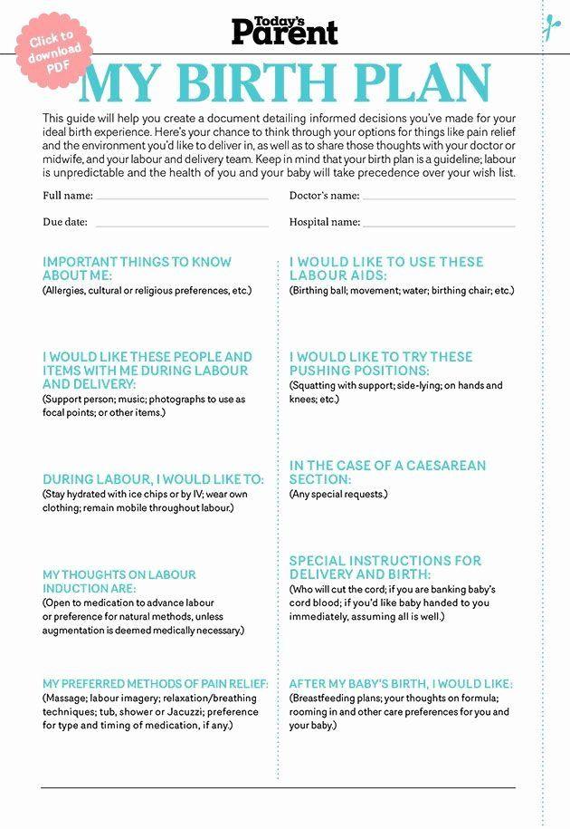 Printable Birthing Plan Template Birth Plan Template Pdf Beautiful 25 Best Birth Plans