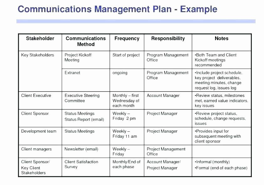 Project Management Action Plan Template Project Management Plan Example Inspirational 15 Work Plan