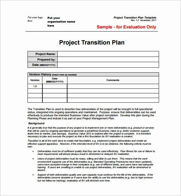 Project Plan Template Word Example Project Plan Template Unique 23 Project Plan
