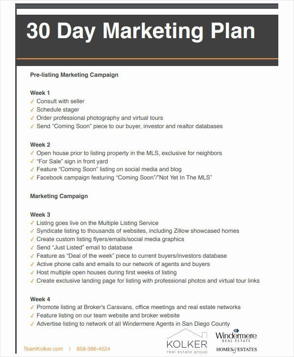 Real Estate Marketing Plan Template Real Estate Marketing Plan Pdf Unique 11 Basic Real Estate