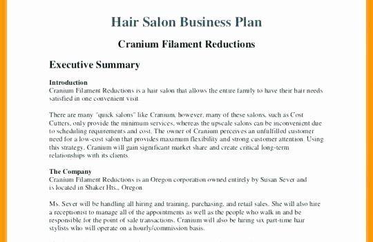 Salon Business Plan Template Free Hair Salon Business Plans Awesome Business Plan for Beauty