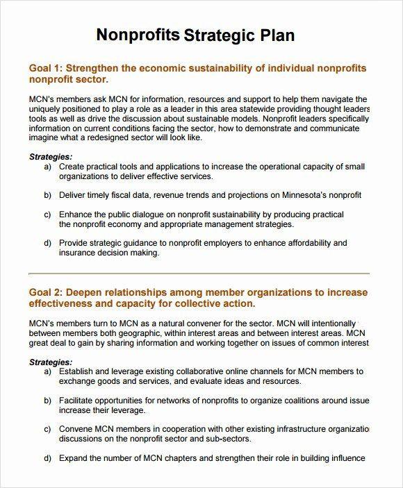 Strategic Plan for Nonprofits Template Strategic Plan for Nonprofits Template Elegant 11 Non Profit