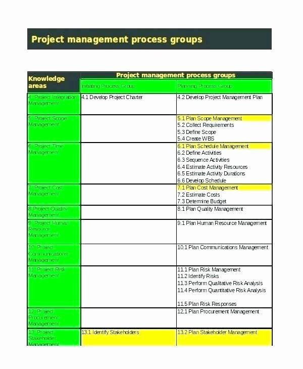 Time Management Plan Template Program Management Plan Template Elegant Procurement