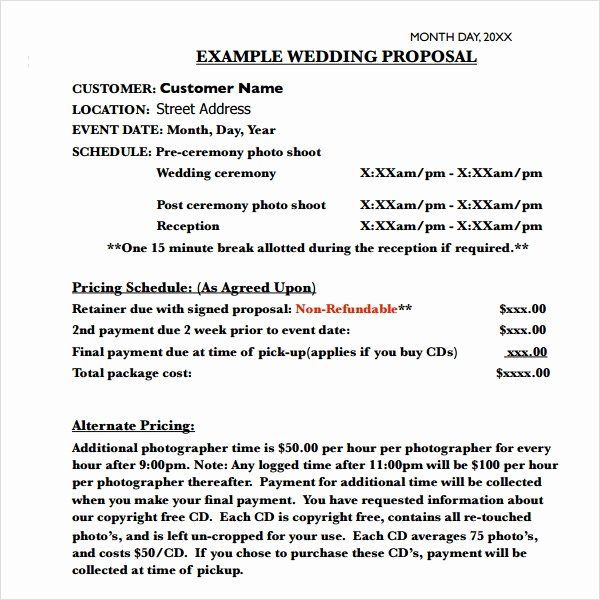 Wedding Planner Proposal Template Wedding Planner Proposal Template Lovely Free 8 Sample