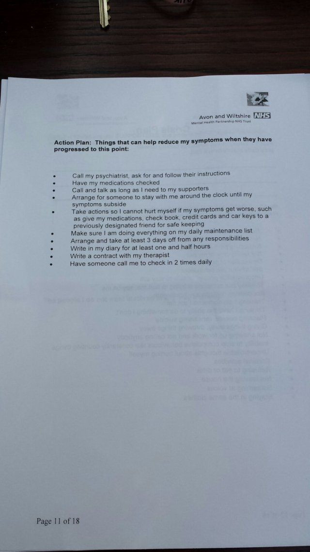 Wellness Recovery Action Plan Template Sample Wrap Wellness Recovery Action Plan